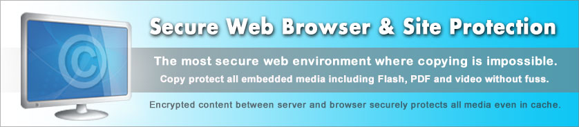 ArtistScope Web Site Protection System