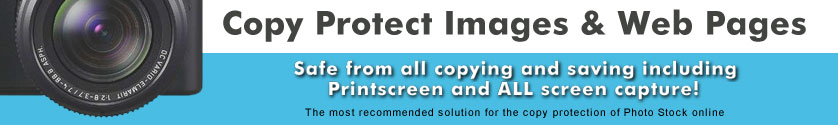Copy protect images and web pages