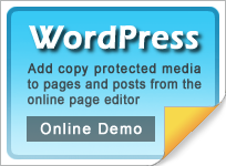 Copy protect WordPress web media